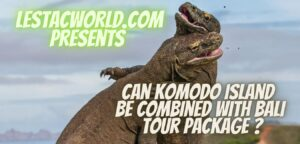 Can Komodo island be combined with Bali tour package?