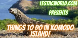What are the things to do in Komodo Island Indonesia?