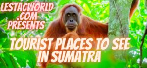 Tourist places to see in Sumatra Island Indonesia ?